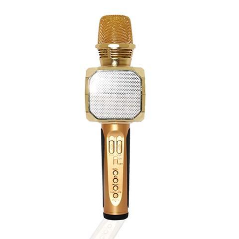 Mic Hát karaoke KINGDOM MC-10
